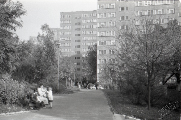 LSM w Lublinie - alejka przy ulicy Krasińskiego